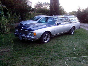 chevrolet-caprice-station-wagon-1979-small-6